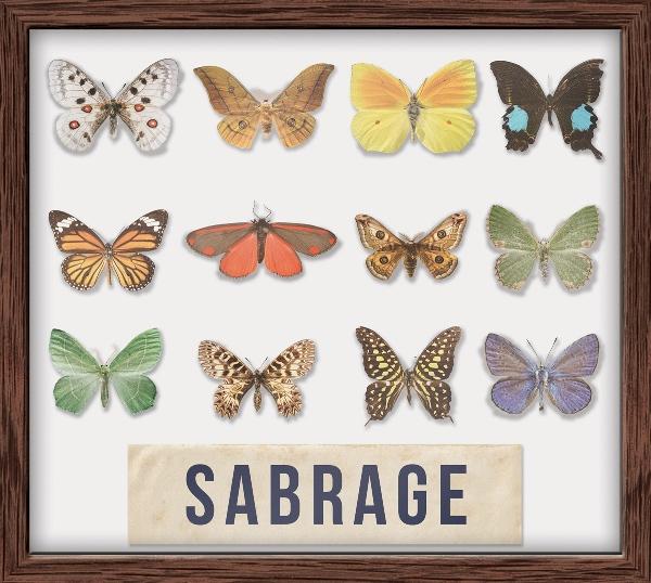 CD Sbírka motýlů